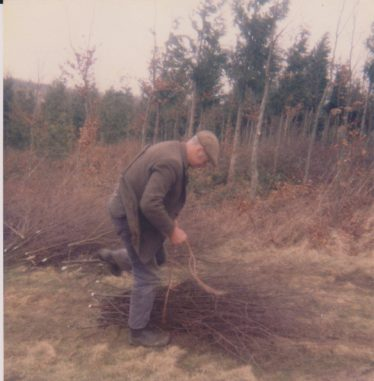 The Ancient Art of Coppicing Woodland