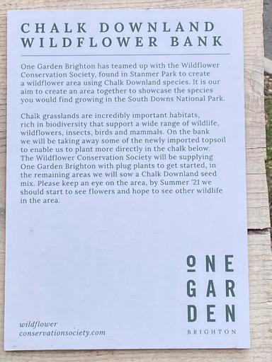 Chalk Downland Wilflower Bank Information Notice | Romi Shadler Reingold